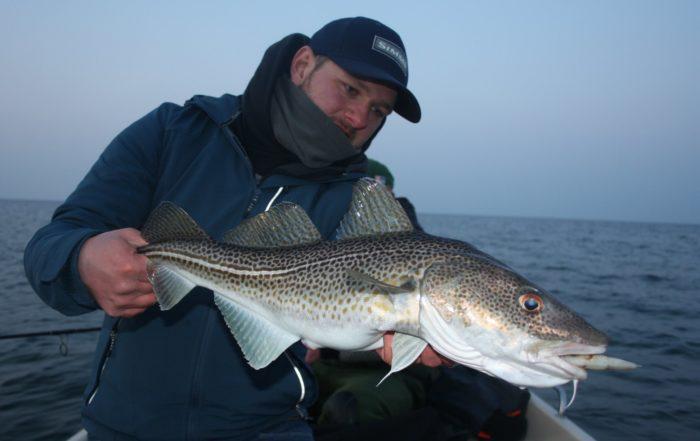 Fiskado - fiskado igb umfrage steven ostsee 700x441 - Home -