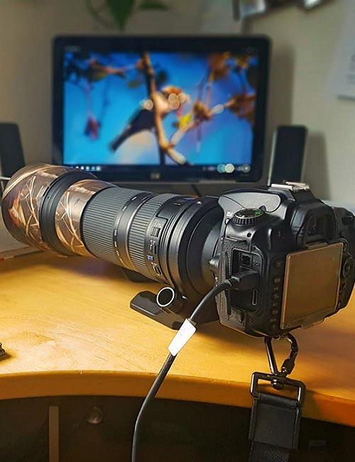 Kamera mit Objektiv für Fotosafari in Mecklenburg-Vorpommern mit Green Guiding